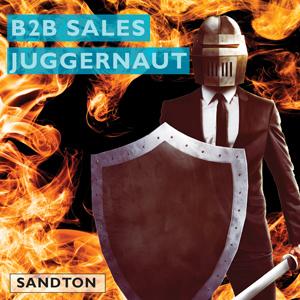 B2B Sales Juggernaut