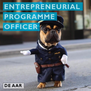 Entrepreneurial programme officer