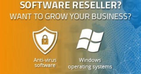 Software developer or IT service provider?