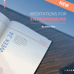Meditations for entrepreneurs by Allon raiz