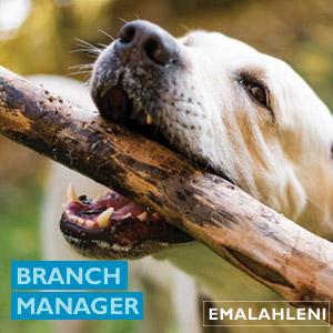Raizcorp vacancy - eMalahleni Branch Manager