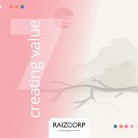 Meditation 7: Creating Value By Allon Raiz CEO of Raizcorp Business Incubator