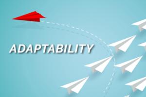Raizcorp article - Five critical skills you need to pivot: #4 Adaptability