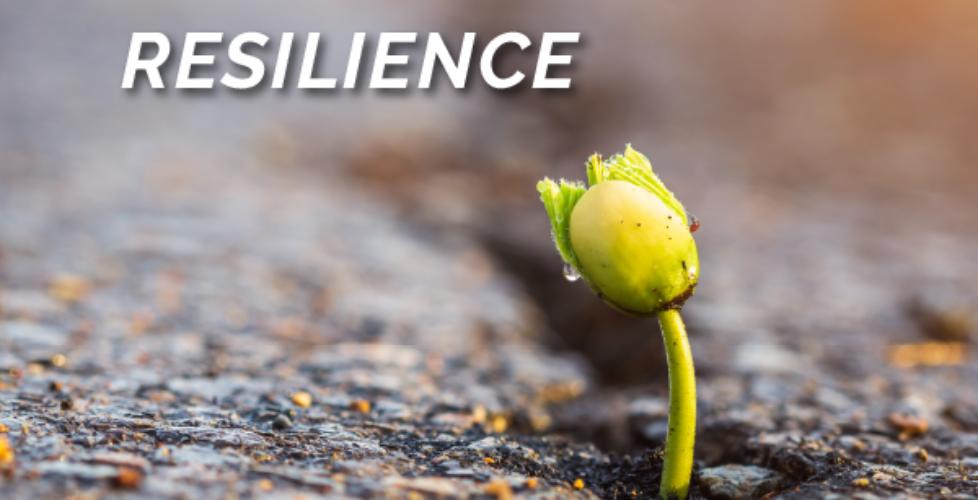 Raizcorp article - Five critical skills you need to pivot: #3 Resilience